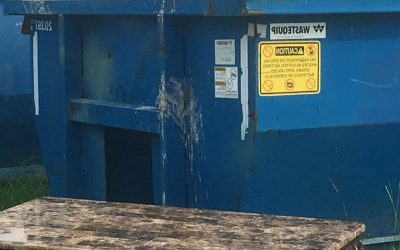 Dumpster Rental Vs. Junk Removal Services